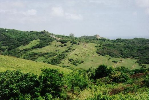 It's easy to see why the call Barbados little England with its rolling green hills